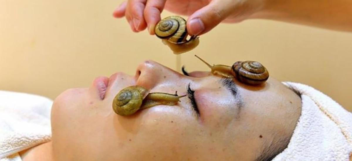 странни масажи, масаж с охлюви, масаж с африкански охлюви, масажи
