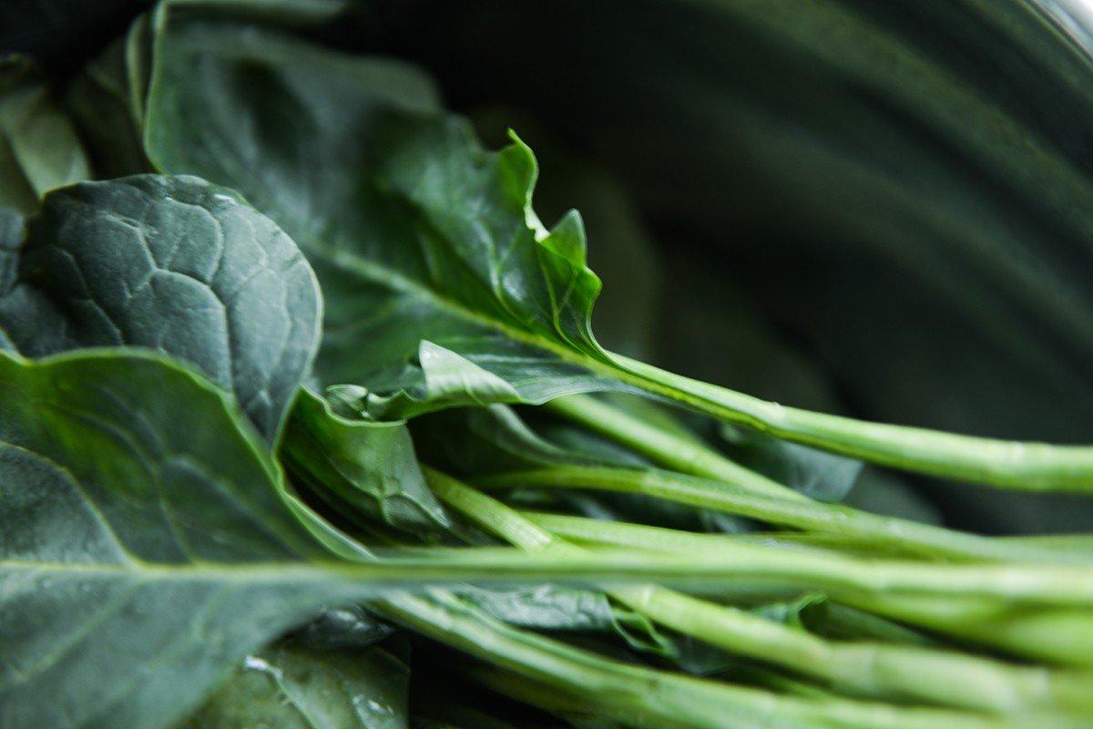 здравословни храни, диета, здравословно хранене, спа център, съвети